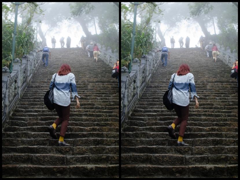 Vietnam Steps